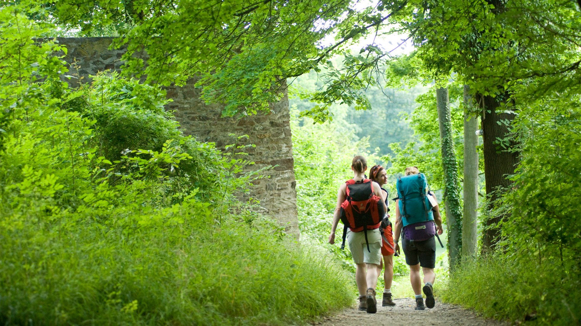 Hikers out in the open | © Dominik Ketz / Rheinland-Pfalz Tourismus GmbH